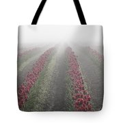 Misty Tulip Fields IIi Tote Bag