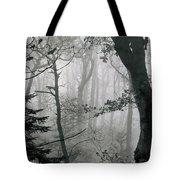Misty Woods, Juniper Tote Bag