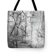 Misty Woods, Whitley Mill Tote Bag