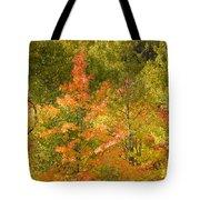 Mixed Autumn Tote Bag