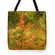 Mixed Autumn Tote Bag