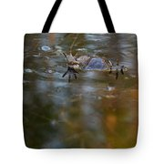 Mixed Frogs Hands Up Tote Bag