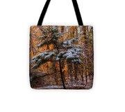 Mixed Seasons Tote Bag