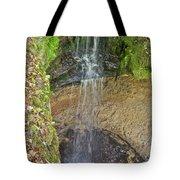 Mna Memorial Falls Tote Bag