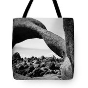 Mobius Arch View Alabama Hills Tote Bag