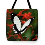 Mocker Swallowtail Tote Bag