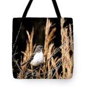 Mocking Bird 2 Tote Bag