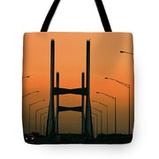 Modified Suspension Infrared Tote Bag