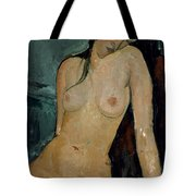 Modigliani: Nude, C1917 Tote Bag