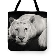 Mohan The White Tiger Tote Bag