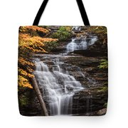 Mohican Falls Tote Bag