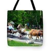 Mohonk Carriage Tour Tote Bag