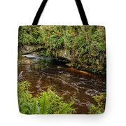 Moira Gate Tote Bag