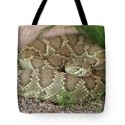 Mojave Green Tote Bag