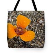 Mojave Orange Tote Bag