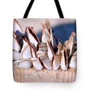 Mollusks On Wood Plank Tote Bag