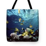 Molokini Snorkeling Couple Tote Bag