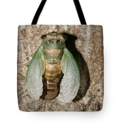 Molting Cicada #2 Tote Bag