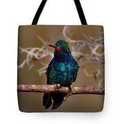 Molting Hummingbird Tote Bag
