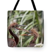 Mom Always Liked You Best Tote Bag