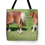 Mom And Baby Tote Bag