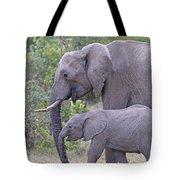 Mom And Baby Elephant Tote Bag