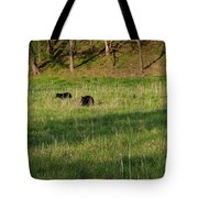 Mom And Cub Tote Bag