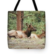 Mom And Kids Taking A Nap Tote Bag
