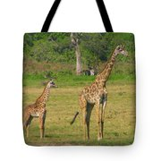 Moma And Baby Tote Bag
