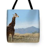 Moment Of Independence Tote Bag