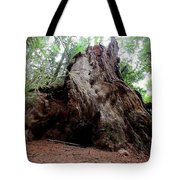 Moments In Time Trail Tote Bag