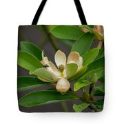 Moments On The Magnolia Tote Bag