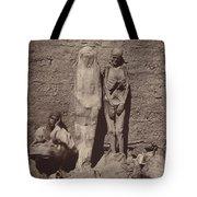 Momies Egyptiennes (egyptian Mummies) Tote Bag