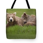 Momma And Cub Tote Bag