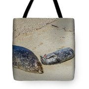 Momma And Pup Tote Bag