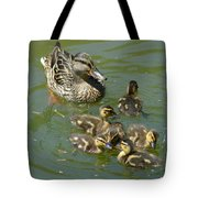 Momma Duck With Babies Tote Bag