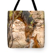 Mom's Love Tote Bag