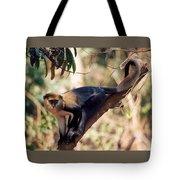 Mona Monkey In A Tree Tote Bag