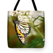 Monarch 2 Tote Bag