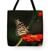 Monarch 6 Tote Bag