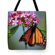 Monarch Beauty Tote Bag