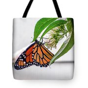 Monarch Butterfly In The Garden 3 Tote Bag