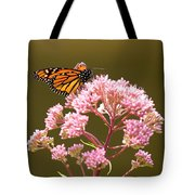Monarch Butterfly 5 Tote Bag