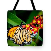Monarch Butterfly At Lunch With 2 Box Elder Bugs Tote Bag