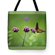 Monarch Butterfly Balanced 2017 Tote Bag