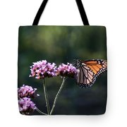 Monarch Butterfly IIi Tote Bag