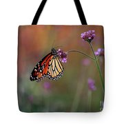 Monarch Butterfly In Autumn 2011 Tote Bag