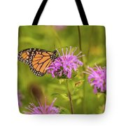 Monarch Butterfly On Bee Balm Flower Tote Bag