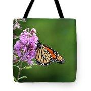 Monarch Butterfly On Butterfly Bush 2011 Tote Bag