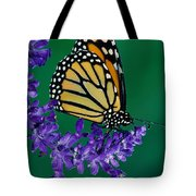 Monarch Butterfly On Flower Blossom Tote Bag